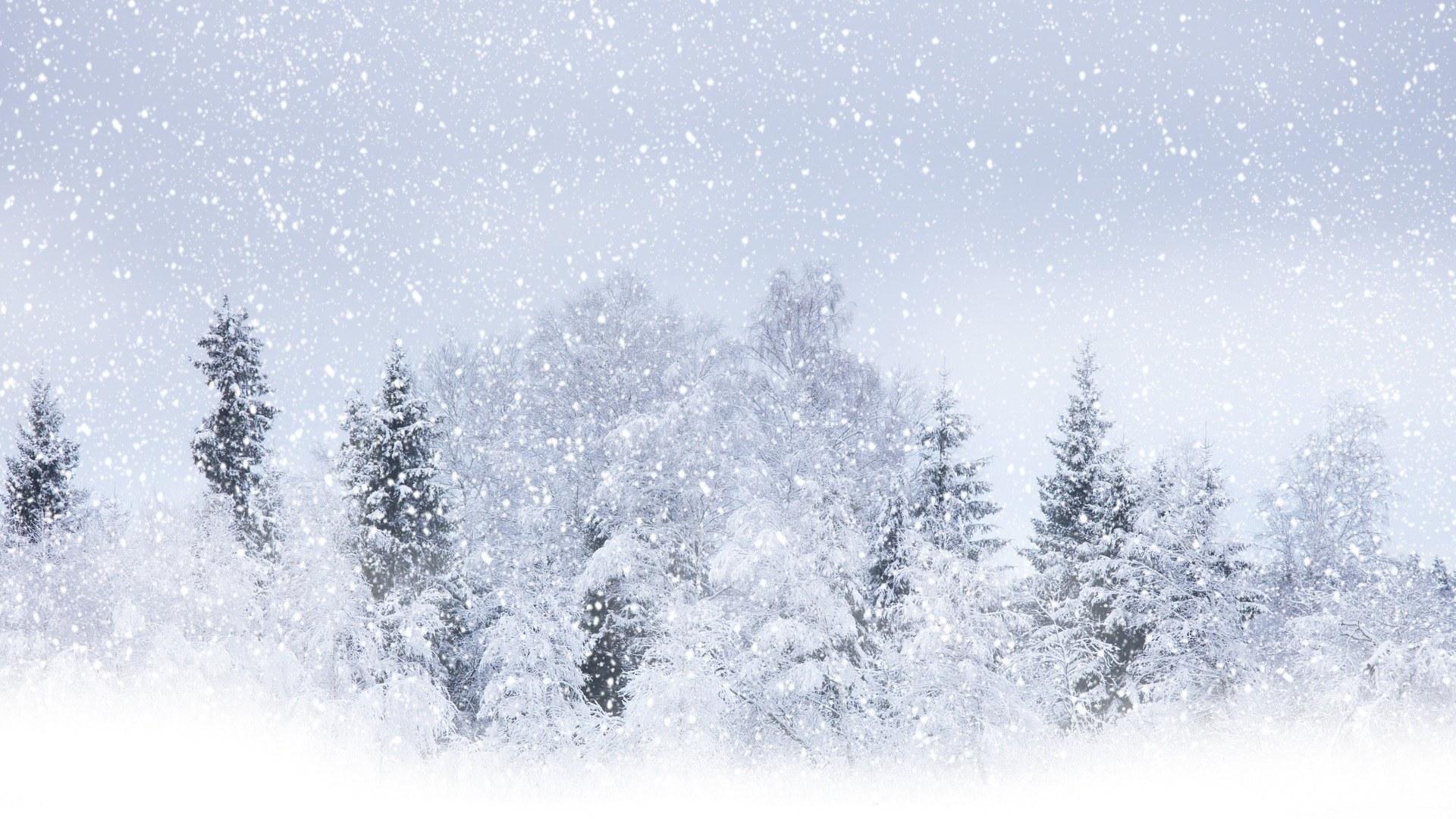 бесплатные обои зима на рабочий стол