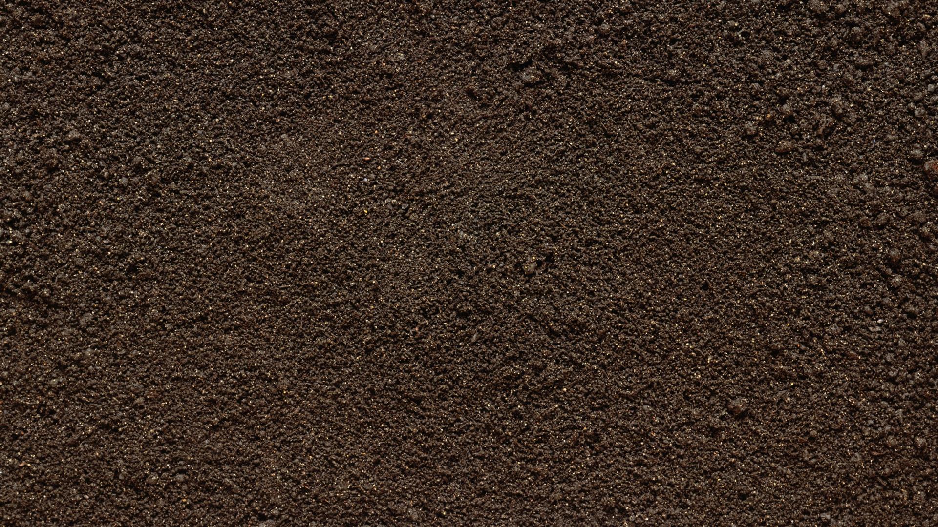download wallpaper 1920x1080 surface, dirt, stones, texture full hd