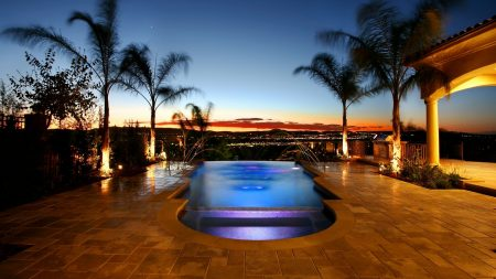 swimming pool, palm trees, evening