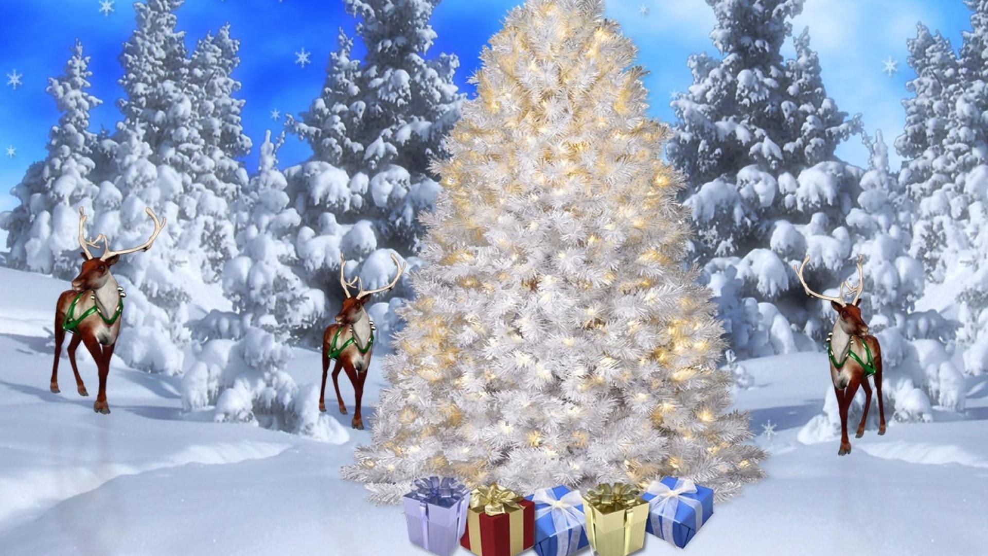 Снежинка векторные широкоформатные 33 обои 1440x900 обои - снежинка векторные широкоформатные обои - искусство обои