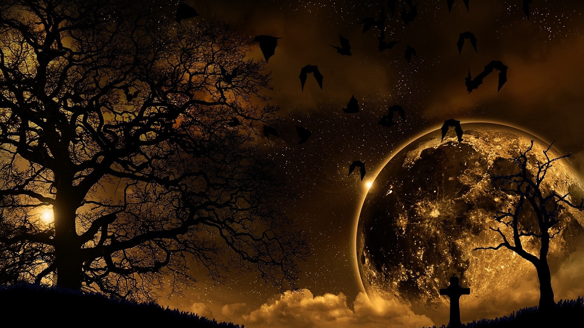 Download Wallpaper 1920x1080 Trees Nature Night Planet Birds Landscape Full HD 1080p Background