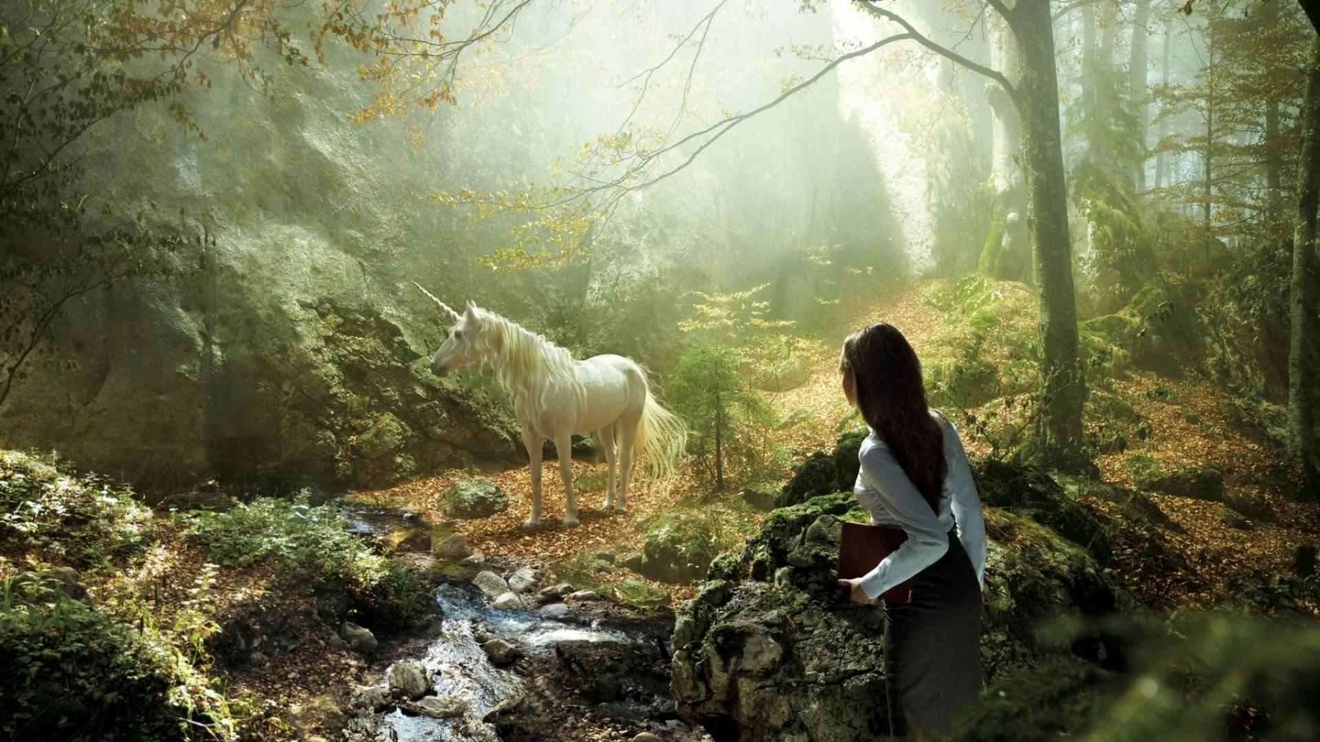 Simple Wallpaper Forest Girl - unicorn_girl_forest_nature_60095_1920x1080  2018_981375 .jpg