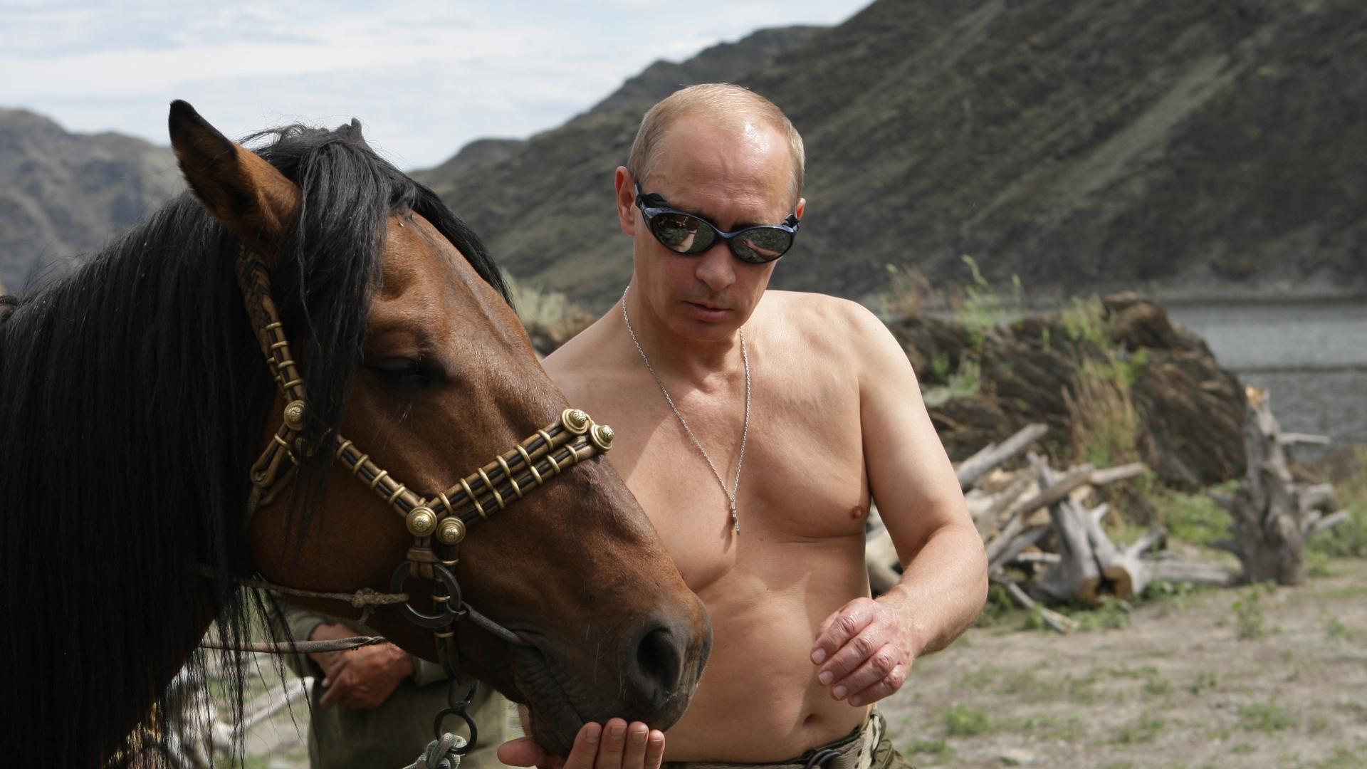 Vladimir Putin President Of Russia Prime Minister