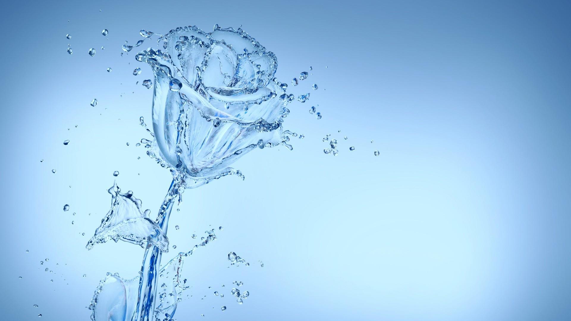 Download Wallpaper 1920x1080 water, spray, flower, bud ...
