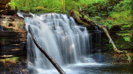 waterfall, grass, moss