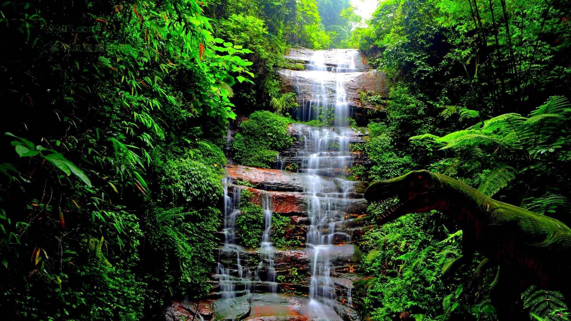 Get The Latest Waterfall Trees Grass News Pictures And Videos Learn All About From Wallpapers4uorg Your Wallpaper