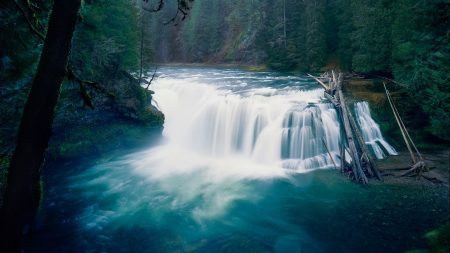 waterfall, trees, nature