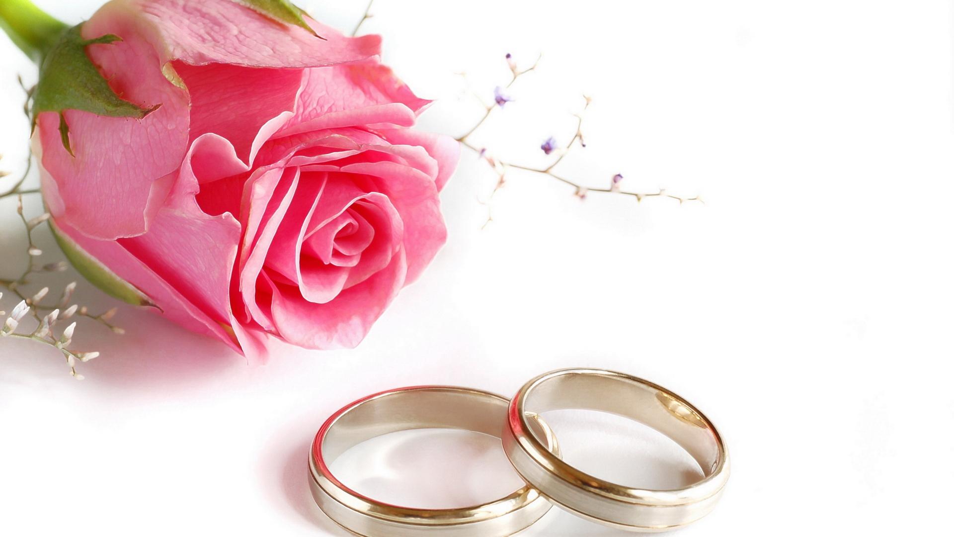 Download Wallpaper 1920x1080 wedding, rings, rose Full HD 1080p HD ...