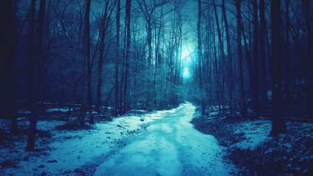 wood, cold, darkness