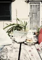 angus, julia stone, table