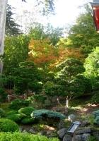 arbor, tree nursery, vegetation