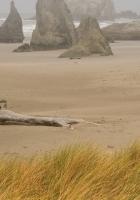 beach, sand, stub