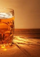 beer, mug, barley