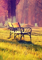 benches, evening, light