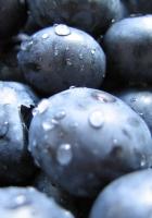 berry, purple, drops