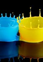bicolor, paint, splash