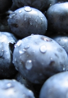 bilberry, berry, drops