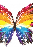 butterfly, abstract, colorful
