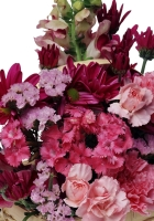carnations, flowers, shopping