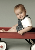 cart, baby, funny