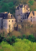 castle, forest, grass