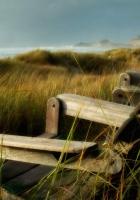 chairs, grass, sea