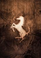 character, horse, mustang