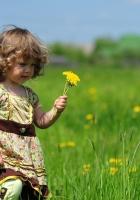 child, girl, grass