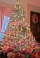 christmas, holiday, tree