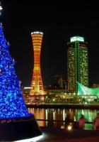 christmas trees, garlands, holiday