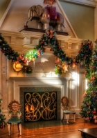 christmas trees, holiday, decorations