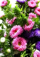 chrysanthemum, bouquet, bright