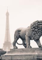 city??, france, paris