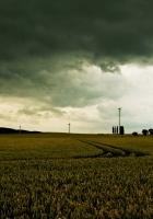 clouds, field, gloomy