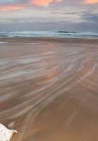 cockleshell, coast, beach