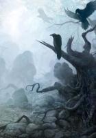 crows, fog, haze