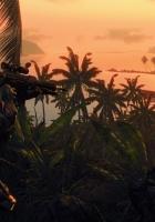 crysis, palms, sun