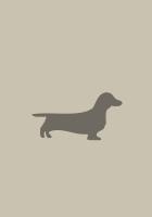 dachshund, dog, minimalism