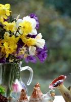 daffodils, freesia, tulips