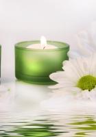 daisies, petals, candles