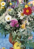 daisies, vase, table