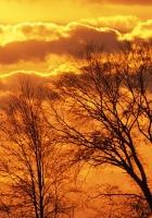 decline, sun, evening