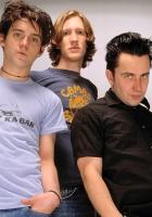 desaparecidos, band, members