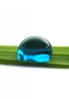 drop, blue, grass