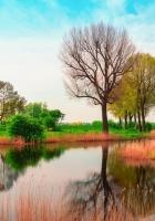 england, may, spring