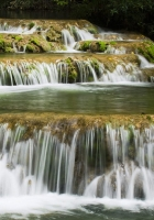 falls, cascades, leaves