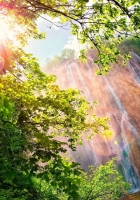 falls, sun, patches of light