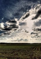 field, arable land, clouds