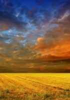 field, horizon, clouds