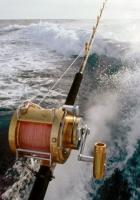 fishing, boat, sea